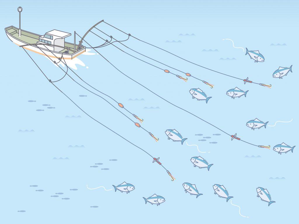 ひき縄釣漁